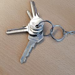 Keys, as reported by  Newcastle Transport using iLost